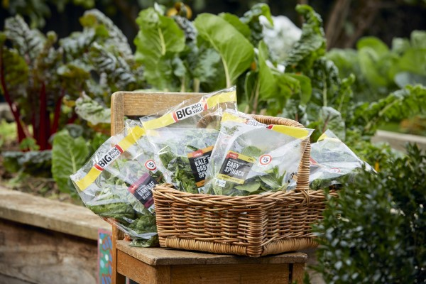 Bags of leafy green veggies in a cane basket on a wooden chair, in a garden.