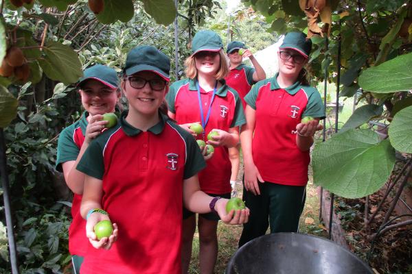 secondary schools, kitchen garden program, education
