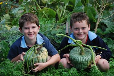 kitchen garden, membership, food education
